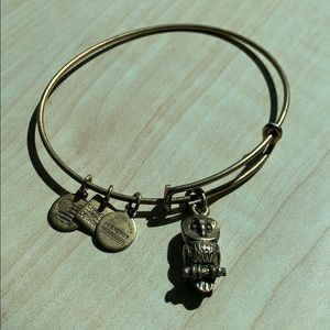 Alex and Ani charm bangle